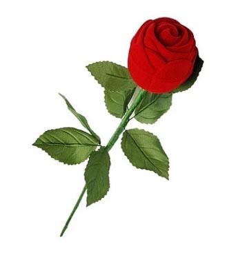 pudełko róża